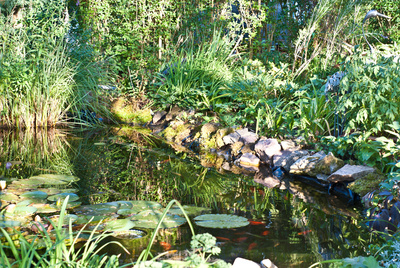 Teich im Garten; Foto: Klaus-Brüheim/pixelio.de