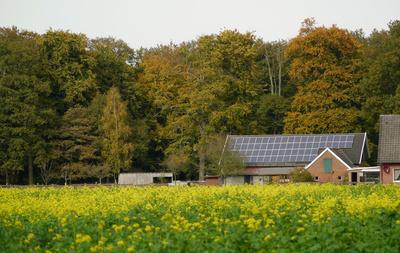 Solarkraft aus der eigenen Solaranlage; Foto: Erich Westendarp / pixelio.de