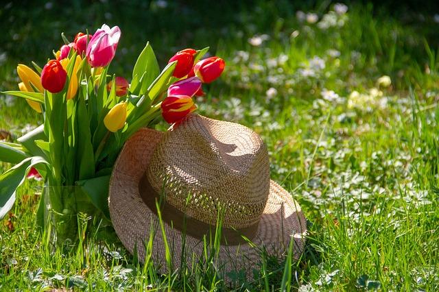 Wie kann ich meinen Garten gestalten? - Tipps zur Gartengestaltung