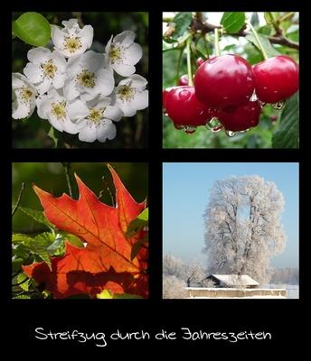 Streifzug durch die Jahreszeiten: Sommer & Winter; Bild: Petra Hegewald / pixelio.de