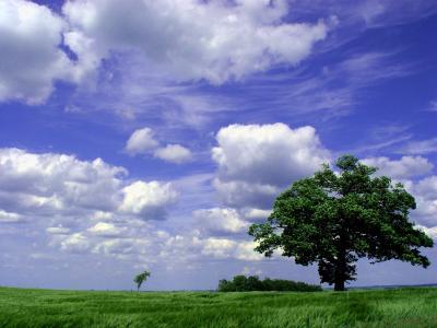 Wetter & Wolken; Bild: Marco Barnebeck(Telemarco) / pixelio.de