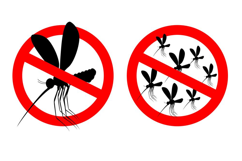 Mit dem richtigen Schutz Insekten im Haus verhindern; Bild: © Top Vector Studio / Shutterstock