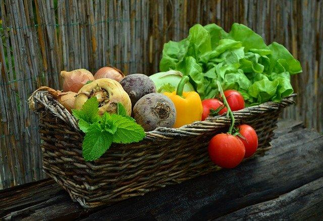 Vitamine für unseren Körper
