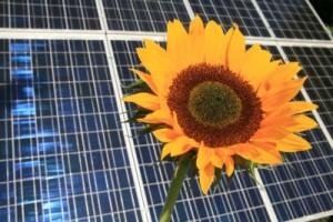 Das Erneuerbare Energien Wärmegesetz – EEWärmeG; Bild: RainerSturm / pixelio.de