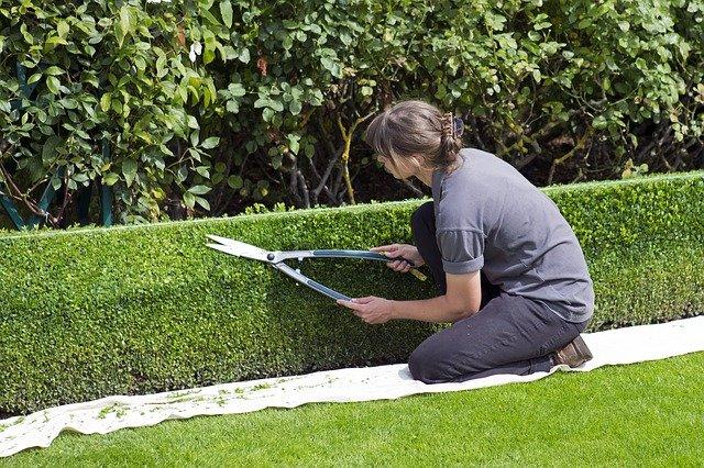 Gartenplanung: Tipps und Ideen für ungenutzte Gartenecken